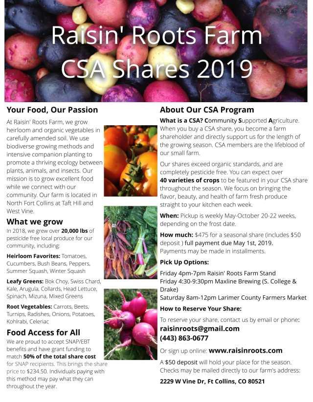 CSA Flyer 2019-1